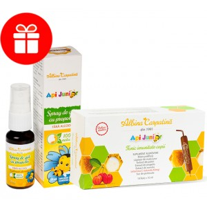 Pachet APIJUNIOR tonic imunitate 10x10ml  + Spray Apijunior 20 ml